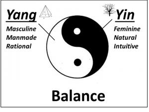 Yin Yang Balanced Outlined 02.09.14